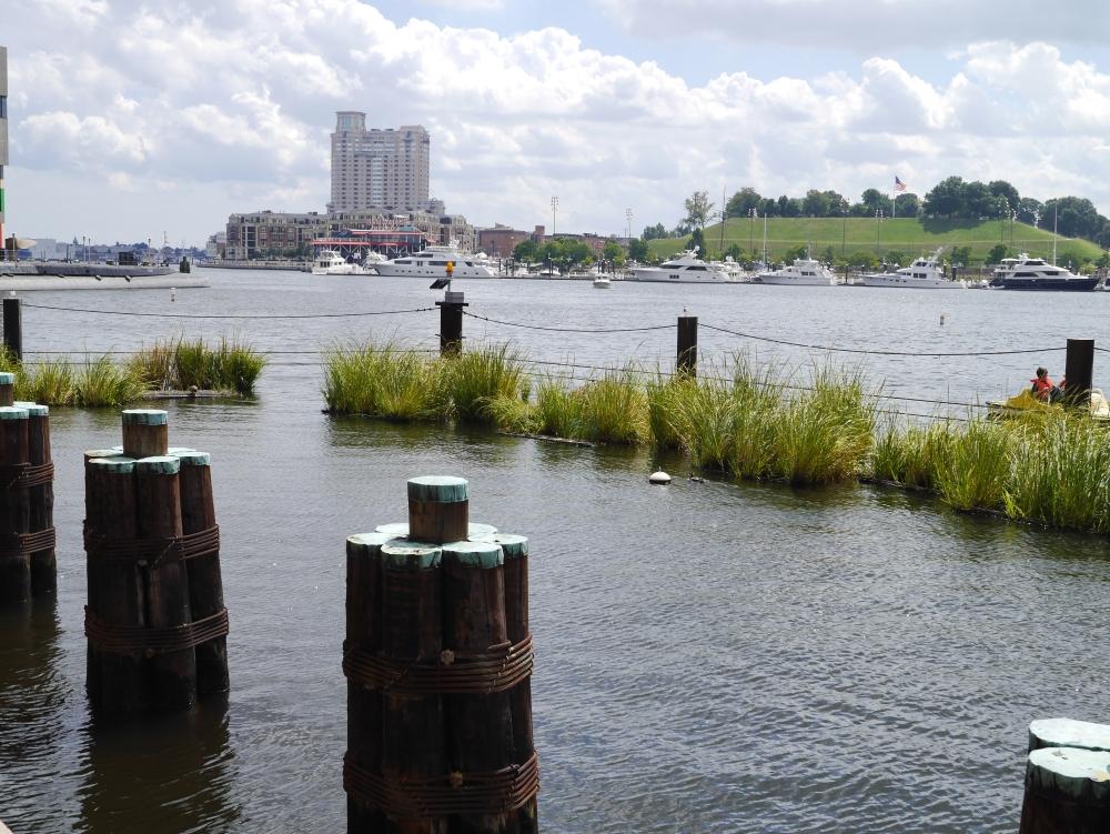 Average Adventure: Baltimore, Maryland (6/6)