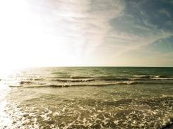 sunny ocean